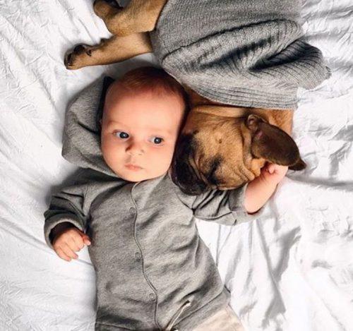 Gray label babykleding baby met hond grijs